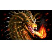 Download Dragon Wallpapers