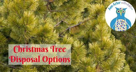 ann arbor christmas tree disposal ann arbor with kids
