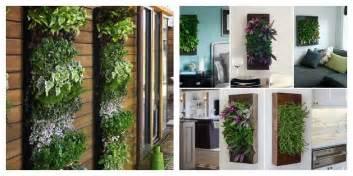 indoor wall herb garden lake luv wish wednesdays indoor wall planter for herbs