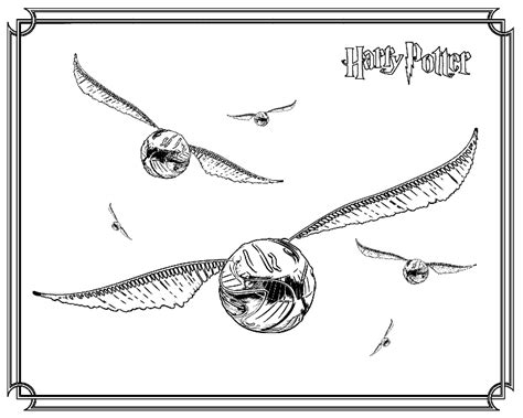 harry potter coloring pages snitch harry potter coloring