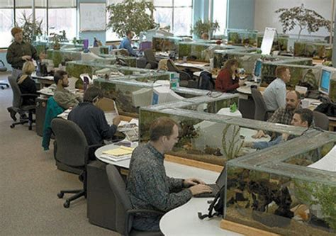 Office Fish Tank Desk My Style Pinterest Office Desk Fish Tank