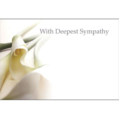 funeral flowers card template oasis with deepest sympathy cards x 50 calla 163 0 89