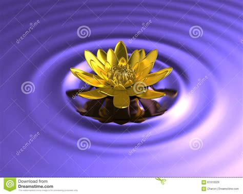 background meaning golden lotus water on lake stock image image 61910029