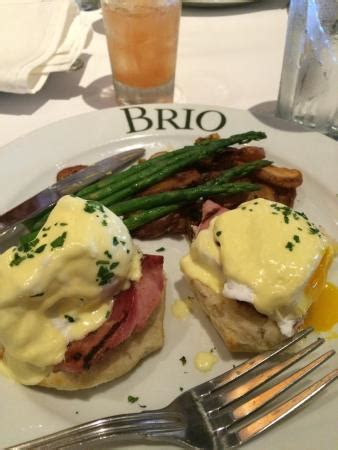 brunch at brio brunch at brio in plantation fl picture of brio tuscan