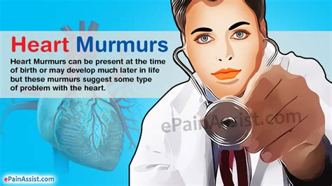 murmur treatment murmurs causes symptoms treatment