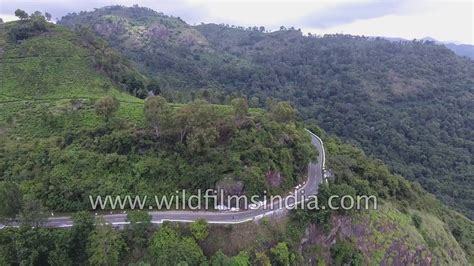 eastern ghats eastern ghats shola forests and tea gardens aerial