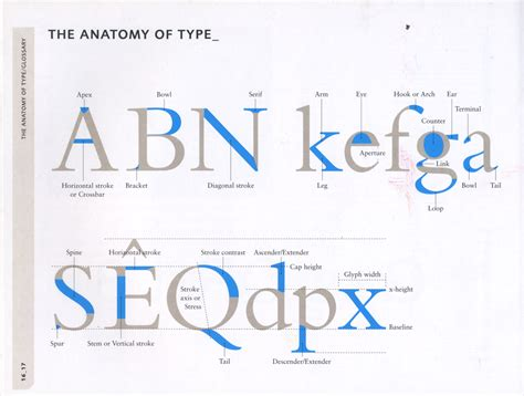 typography letter parts paul shaw letter design 187 the nomenclature of letter forms