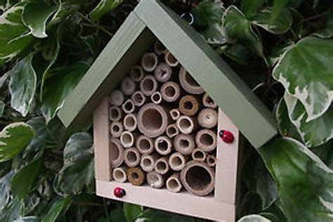 the bug house make a tube bug house