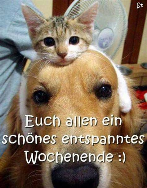 entspanntes wochenende 906 best images about happy happy happy on
