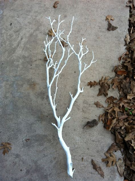 spray painting tree branches pink and gold decor diys popsugar home