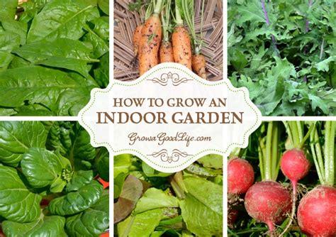 grow  indoor garden