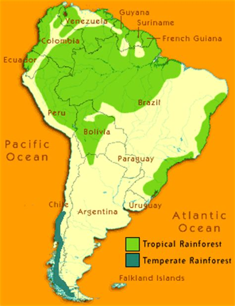 rainforest map south america forests needed by humans and animals to survive