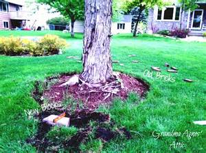 Landscape Edging Around Tree Roots Backyard Patio Ideas With Garden Paving Designs Remarkable