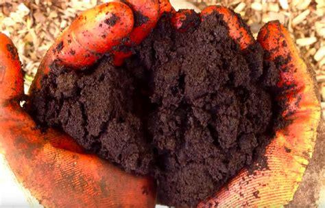 koffiedik tuin gooi je koffiedik niet meer weg deze dingen kun je ermee