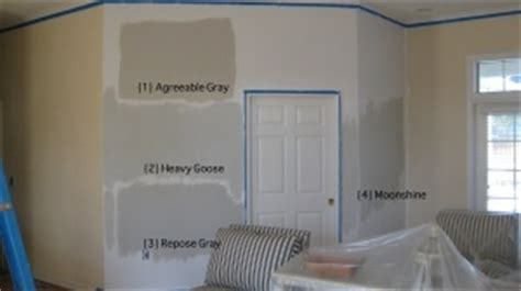 1 agreeable gray sherwin williams 2 heavy goose martha stewart for home depot 3 repose