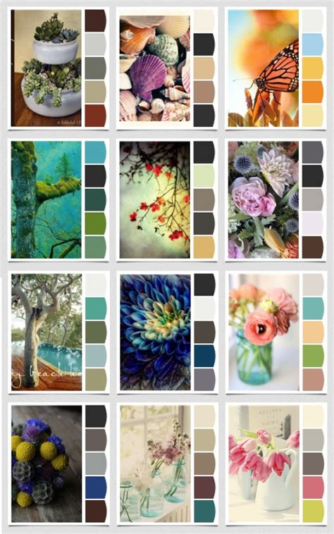 color combinations on color balance design seeds and col