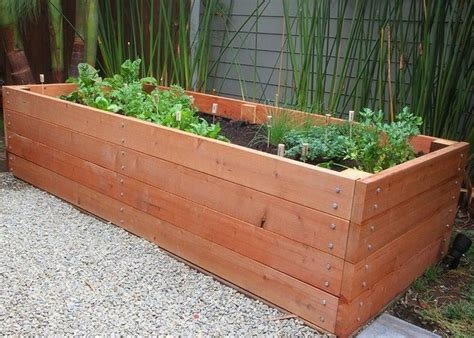vegetable planter box gt container gardening