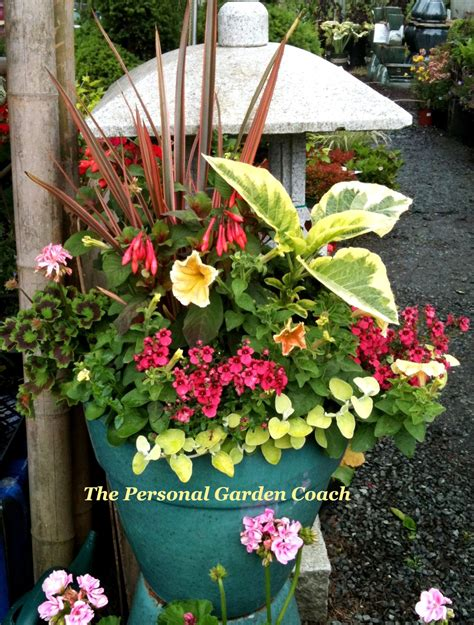 garden arrangements brainstorming a container garden design black tan