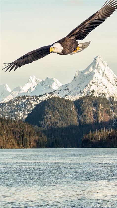 eagle mountains lake  pure  ultra hd mobile