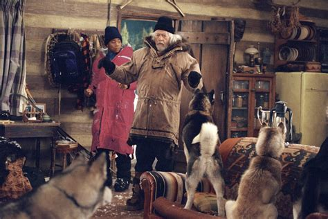 cuba gooding jr sled dog movie snow dogs movie wallpaper wallpapersafari