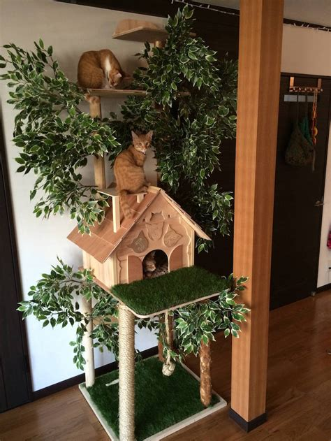 real tree or fake foe cats diy cat tree offers alternative to conventional scratching posts and beds