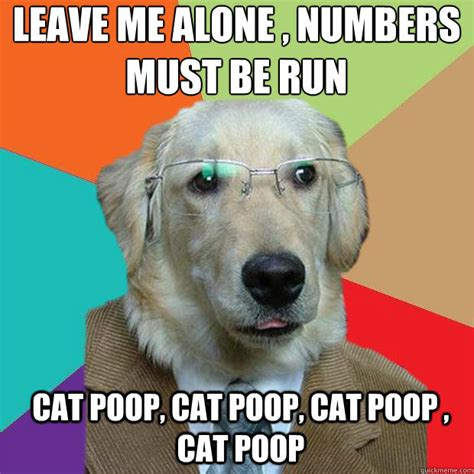 Dog Poop Meme - leave me alone numbers must be run cat poop cat poop cat poop cat poop business dog