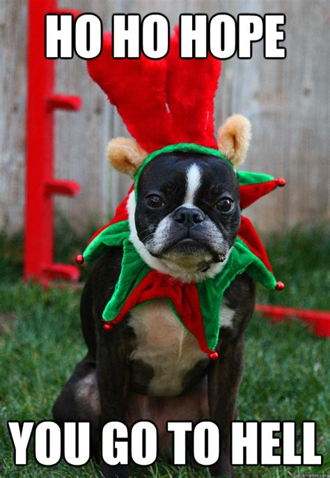 Christmas Dog Meme - ho ho hope you go to hell grumpy holiday dog quickmeme