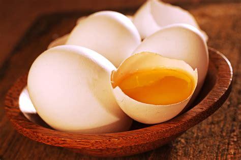 egg yolk for dogs is egg yolk for dogs