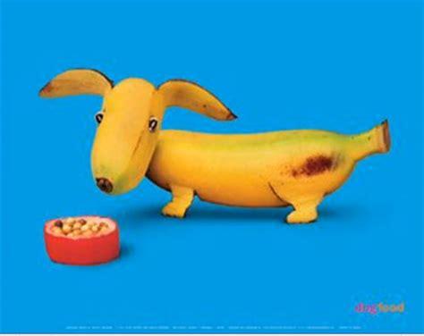 imagenes de animales hechos con frutas animales hechos con frutas y verduras taringa
