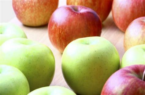 fruit ripening apple other fruits ripen faster freshmagazine