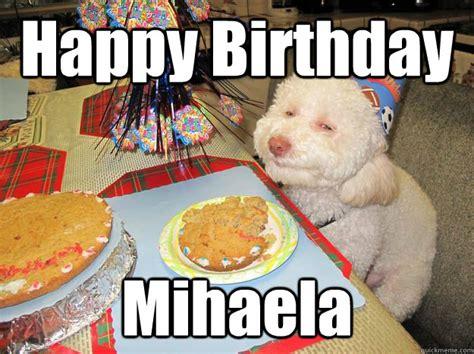 Birthday Cake Dog Meme - happy birthday mihaela stoned birthday dog