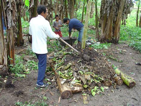 Pupuk Organik Kompos Dari Sah berkas ecuador composting method peru jpg