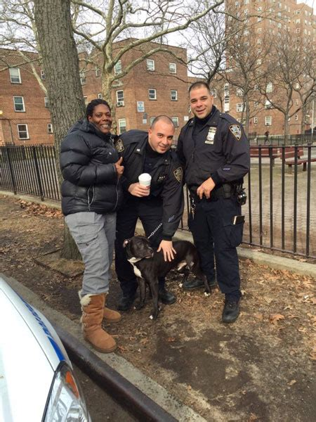 section 16 officers nypd officers help drive injured dog and owners to vet