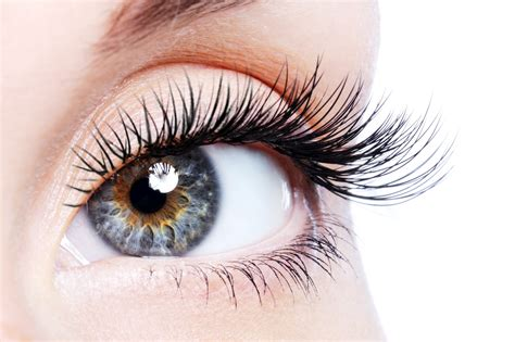 Eye Lash eyelash extensions the lanes health