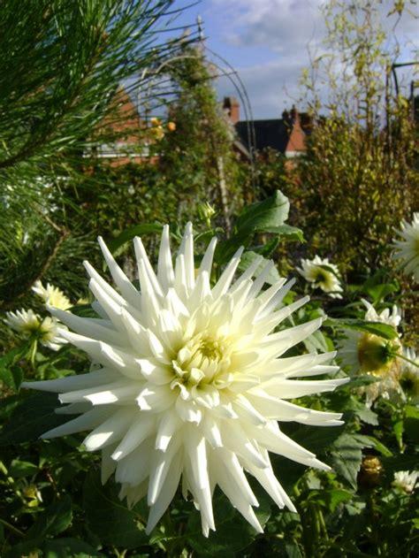 Garden Pesticides by Pesticides Climate Change Garden