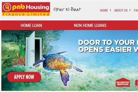pnb housing loan pnb housing finance to launch ipo in october livemint