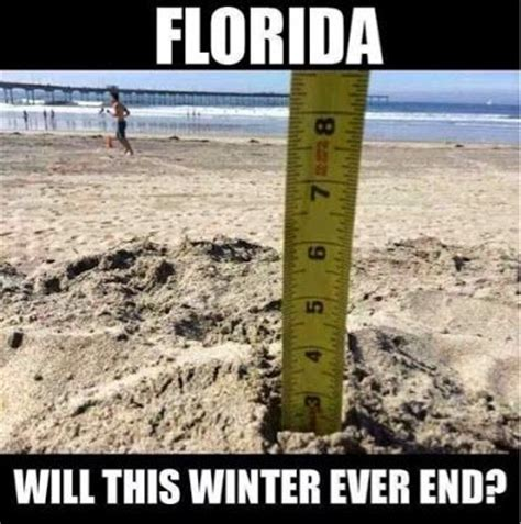 Winter Storm Meme - the 25 best florida memes about america s weirdest state
