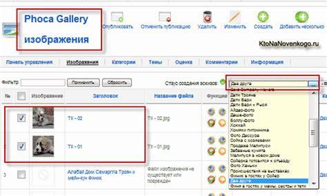 phoca gallery themes joomla 1 5 фотогалерея phoca gallery plugin установка создание