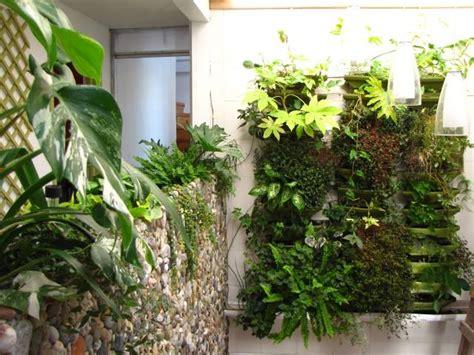 Plante Fougere D Intãģ Rieur Le Jardin De Jardin Int 233 Rieur Pollution Et