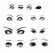Eyes Ref By Ryky On DeviantArt