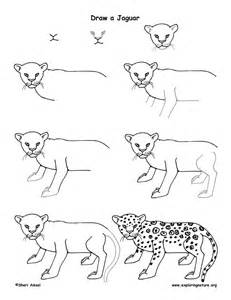 How To Draw A Jaguar Jaguar Drawing Lesson