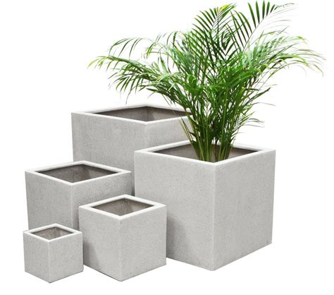 advice  houseplant containers pots