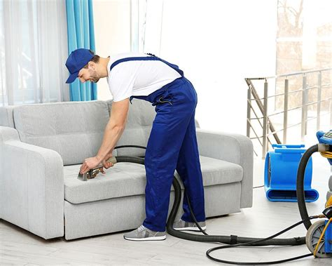 professional couch cleaning service carpet cleaning auckland carpet spot removal