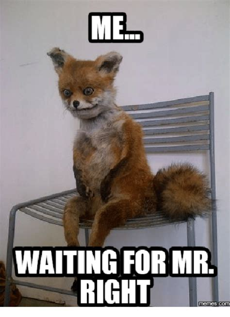 waiting meme waiting for meme www pixshark images galleries