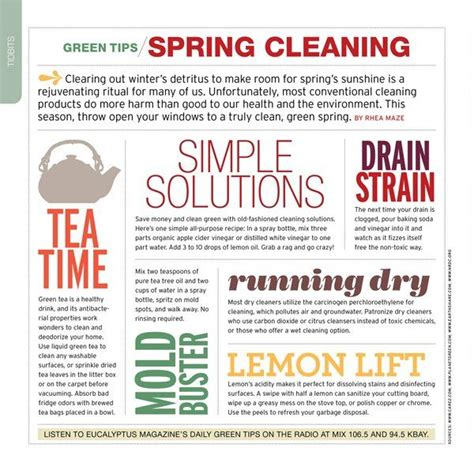 spring cleaning tips 29 best images about spring cleaning on pinterest spring