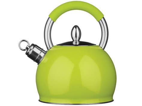 induction kettle or electric kettle 3ltr whistling kettle stainless steel gas electric induction hob home cing ebay