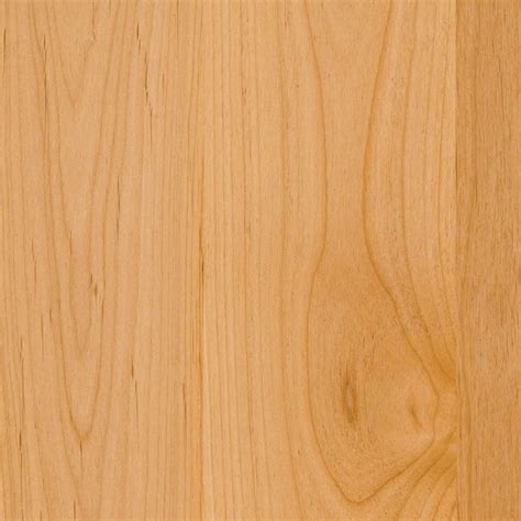 alder wood species species finishes alternative surfaces