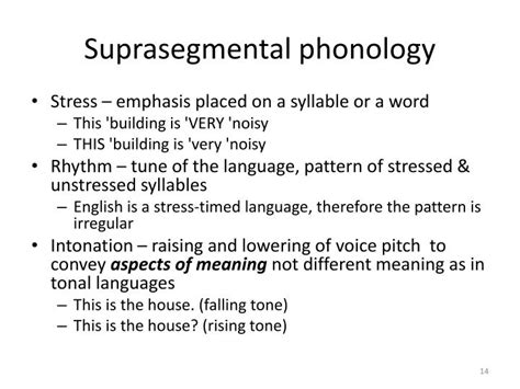 stress pattern english language ppt introduction to linguistics 2 the sound system