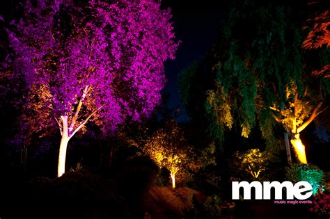 Outdoor Up Lighting For Trees Take Your Wedding Outdoors 171 Falls Sun Valley Dj Disc Jockey Event Decor Lighting More