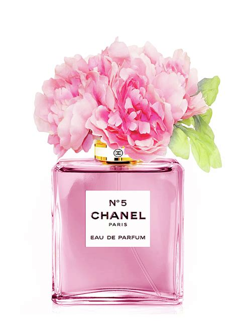 Parfum Chanel Pink chanel n5 pink with flowers mixed media by green palace